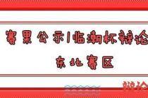 2020临潮杯国际华语辩论邀请赛东北赛区决赛赛果